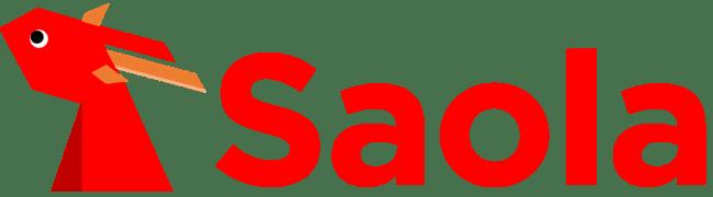 株式会社Saolaを設立