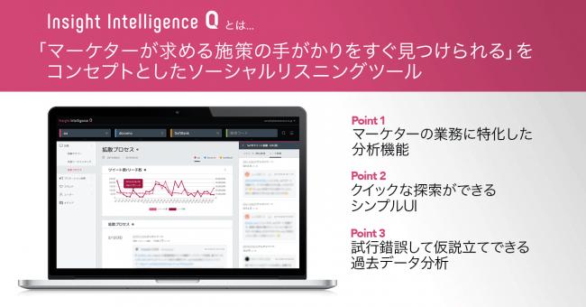 ソーシャルリスニングツール「Insight Intelligence Q」とは-データセクション株式会社