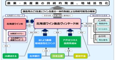 北海道ワイン後志ヴィンヤード株式会社様への協調出資・融資