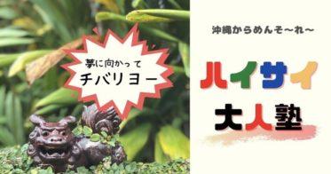 One family/「沖縄からめんそ〜れ!ハイサイ大人塾」 1月13日(水)リリース